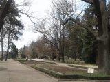 Започнаха пролетните грижи за зелените площи в града